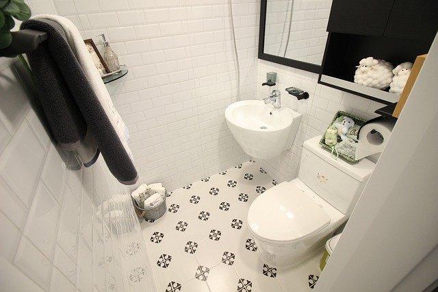 Sanitise your toilet